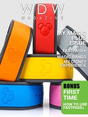Screenshot WDW Magazine on iPad