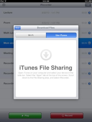 Screenshot iRecorder Pro on iPad