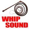 Big Bang Whip Sound & More!