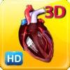 3D Human Heart Pro