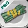 Dash Diet Pro