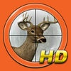 Ace Hunter HD for iPad