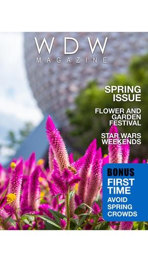 Screenshot WDW Magazine on iPhone