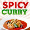 Spicy Curry Recipes