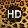 HD Animal Wallpapers for iPad, iPhone, iPod Touch and Mini