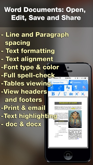 Screenshot iDocs for Office Word Documents & PDF Annotation & Forms on iPhone