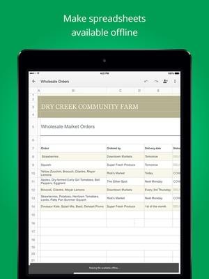 Screenshot Google Sheets on iPad