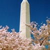 Washington, DC: A to Z