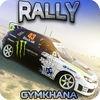 Rally Gymkhana Drift