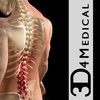 Orthopedic Patient Education