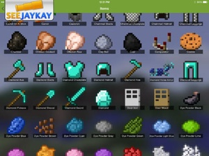 Screenshot Resource Packs Pro for Minecraft on iPad