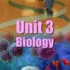 Unit 3 Biology
