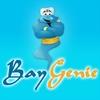 BayGenie Auction Sniper