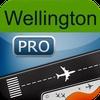 Wellington Airport + Flight Tracker Premium air WLG New Zealand