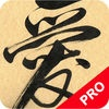Learn Calligraphy Tutorial PRO