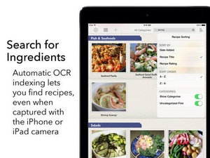 Screenshot Recipe Gallery on iPad