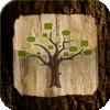 Tree Fungi ID