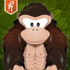 Gorilla Workout: Fitness Aerobic Strength and Exercise Trainer Program on a Budget