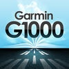 Jeppesen Garmin G1000 Mobile Training