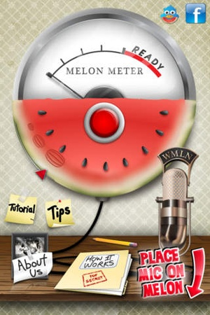Screenshot Melon Meter on iPhone