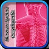Nervous System Enc