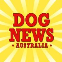 Dog News Australia
