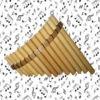 Pan Flute Music Maker