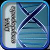 DNA Enc