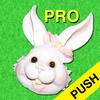 Easter Countdown Pro w/Push Notifications