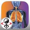 Qigong Breathing