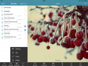 Screenshot WinZip on iPad