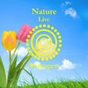 Nature Live Wallpapers