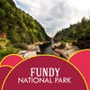 Fundy National Park Tourism Guide