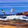 EZ Tides PTY Free