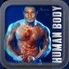 Human Body Anatomy Encyclopedia