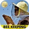 Best Way To Start Bee Keeping Guide
