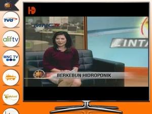 Screenshot TV Indonesia HD Pro on iPad