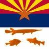 Arizona Lakes