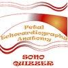 Sono Quiz Fetal Echocardiography Anatomy