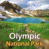 Olympic National Park Travel Guide