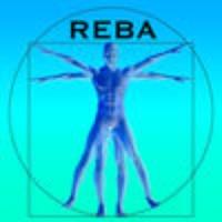 REBA Ergonomic Analysis