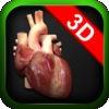 VirtualHeart3D