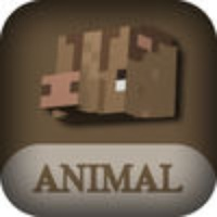Best Animal Skins