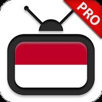 TV Indonesia HD Pro