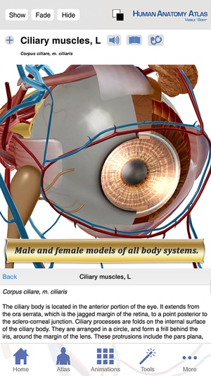 Screenshot Human Anatomy Atlas on iPhone