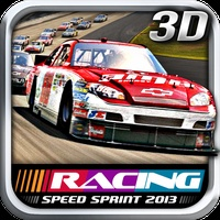 Speed Sprint Racing 2013