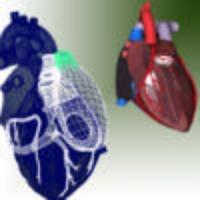 3D Heart HD