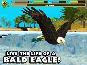 Screenshot Eagle Simulator on iPad