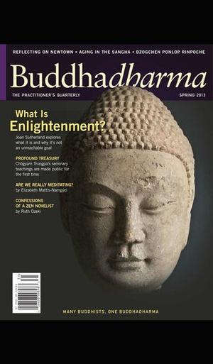 Screenshot Buddhadharma Journal on iPhone