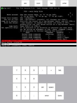 Screenshot Mocha Telnet on iPad